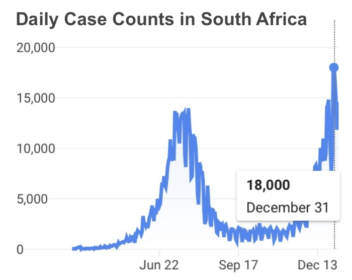 Chart displaying daily covid-19 cases in South Africa, peaking at 18,000 cases on December 31, 2020
